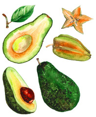 Set of avocado and carambol fruit images on a white background. Watercolor.