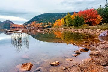 Autmn foliage in Acadia National Park, Maine USA