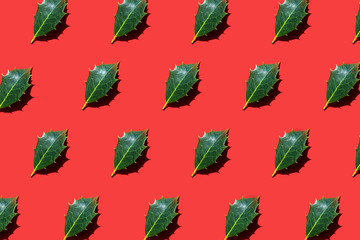 Holly leaves lying diagonally on bright red background. Trendy sunlight autumn and winter photo pattern. Minimal concept. Open composition. Flat lay style.