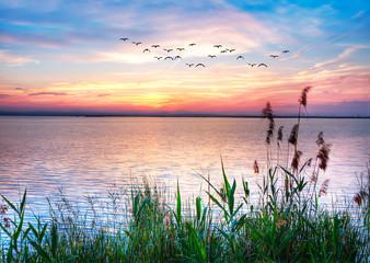 puesta de sol de colores pastel en el oceano