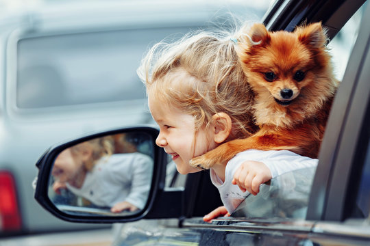 Little girl and little dog in the rent car