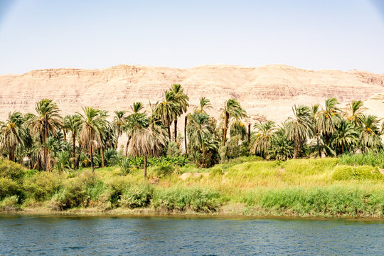 Bank of Nile river seen during touristic cruise, Egypt