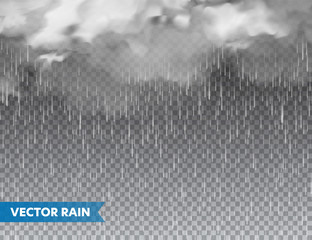 Realistic rain with clouds on transparent background. Rainfall, water drops effect. Autumn wet rainy day. Vector illustration.