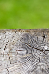 old wooden texture for background