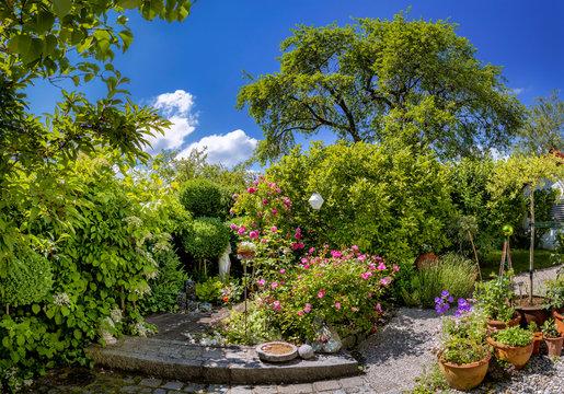 Schöner Garten im Sommer