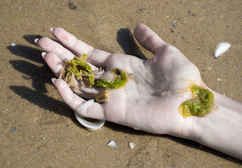 Hand of a drowned woman, accident. Symbolic image of suicide, murder or death in water. Part of body, close-up.