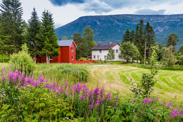 Colorful house and farm in Lonset village, Oppdal municipality in Trondelag county in Norway, Scandinavia