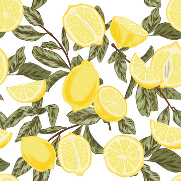 pattern with lemons hand drawn yellow and lemon