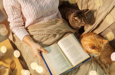 Fototapete - hygge, literature and people concept - close up of red and tabby cat and female owner reading book in bed at home