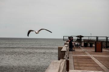 As Hurricane Dorian passes the Carolinas, locals fish off the Jacksonville Beach Pier in Jacksonville