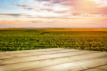 Wall Mural - Autumn vineyard withs unset. Empty space on wooden table for products, deoration or text.