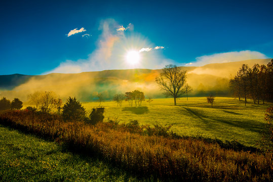 Mists Rising From The Field