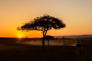 African sunrise with acacia trees and safari cars in Masai Mara, Kenya. Savannah background in Africa. Safari concept Wall mural