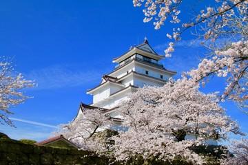 春の鶴ヶ城(福島県・会津若松市)