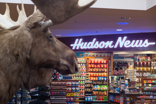 General view of  stuffed moose outside Hudson News in Ted Stevens Anchorage International Airport in Anchorage Alaska on August 4, 2019
