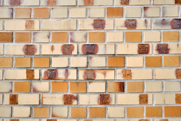 Background from a fine beige brick wall