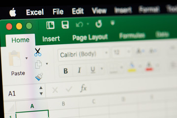 MIcrosoft office excel spreadsheet