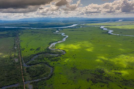 Dschungel in Brasilien, Amazonas / Pantanal