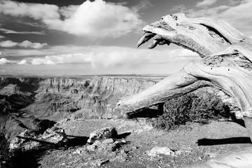 Arizona - Grand Canyon. Black and white vintage style.