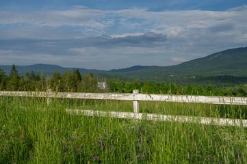 Wall Mural - White Board Meadow Fence