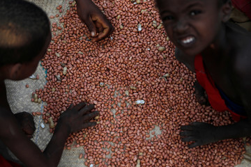 A family sort peanuts in the village of Lambokely near the city of Morondava