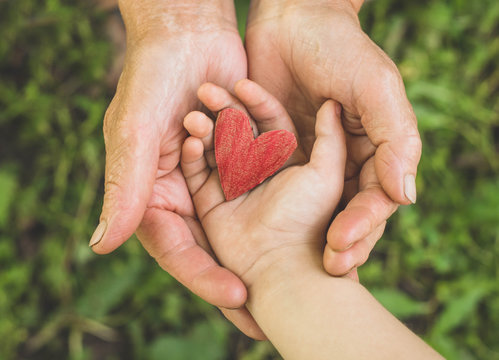 Childs hand and old hand grandmother hold heart. Concept idea of love family protecting children and elderly people grandmother friendship togetherness relationship Two generation.