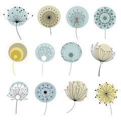 Set of dandelions. Collection of stylized dandelions. Decorative flowers. Flower bud logo. Vector illustration.