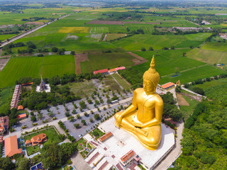 Fototapete - Golden buddha statue in buddhism temple with rice plantation