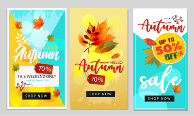 Hello autumn background layout decorate with leaves for shopping sale or promo poster and frame leaflet or web banner.Vector illustration template.