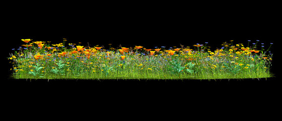 Background illustration of green field of grass with flowers. 3D rendering. Useful for commercial banners and print