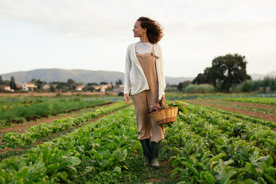 Ecological agriculture,