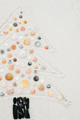 Christmas Tree Seashells and Driftwood