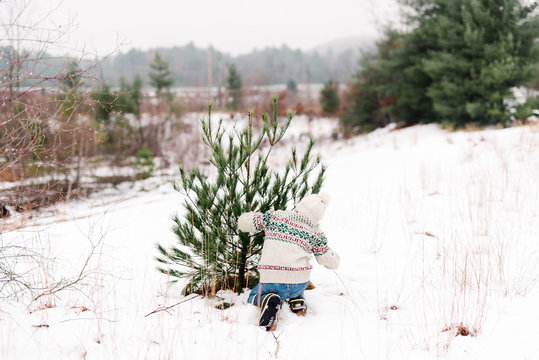 boy cutting down a christmas tree on a cold day