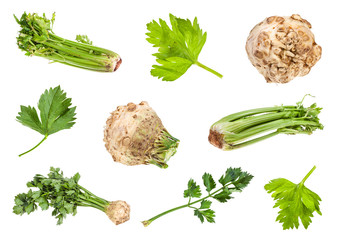 various roots and greens of celeriac and celery