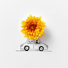Beautiful natural orange flower decorating Drawing a car on a gr