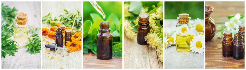 Collage of different pictures of extracts of herbs. Homeopathy. Selective focus.