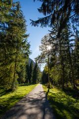 Wall Mural - Wanderweg im Karwendel Gebirge in Tirol / Österreich