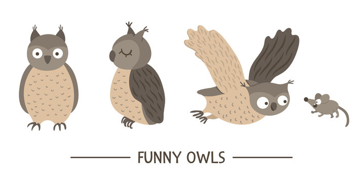 Vector set of cartoon style hand drawn flat funny owls in different poses. Cute illustration of woodland birds for children's design. .