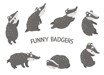 Vector set of cartoon style hand drawn flat funny badgers in different poses. Cute illustration of woodland animals for children's design. .