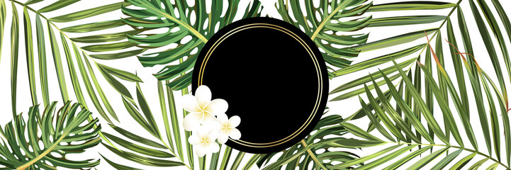 Tropical forest. Jungle background flower and palm. Vector floral illustration. Green tropical forest banner