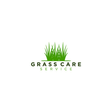Logo for the home lawn care service company