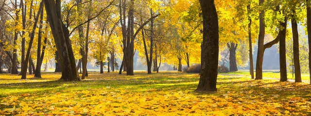 Poster de jardin Melon Wide Angle Beautiful Nature Autumn landscape
