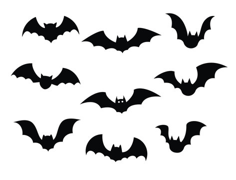 Black silhouettes of bats set on white background.