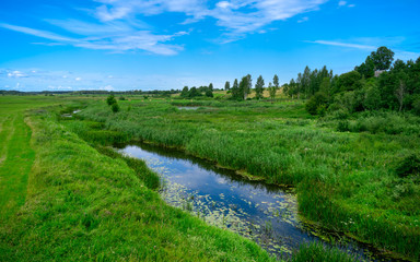 Wall Murals Green A narrow water canal, river, stream going through a green grass field landscape into bright summer clouds. Rural, countryside landscape