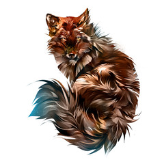 Drawn animal red fox on a white background