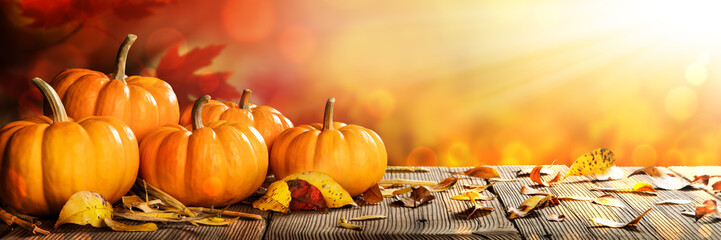 Banner Of Thanksgiving Pumpkins And Leaves On Rustic Wooden Table With Sunlight And Bokeh On Orange Background - Thanksgiving / Harvest Concept