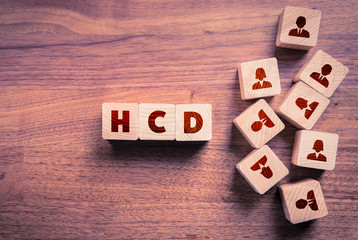Human Centered Design HCD concept