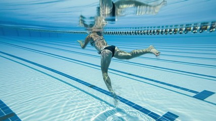 Wall Mural - Woman swimming in the poolin the olympic Swimming pool view from under water