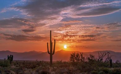 Fotobehang Arizona Sunrise In the Arizona Desert With Cactus & Mountain Range