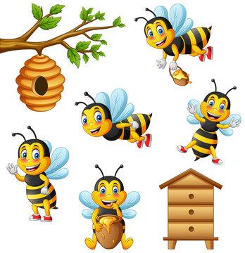 Cartoon cute bee and beehive. vector illustration